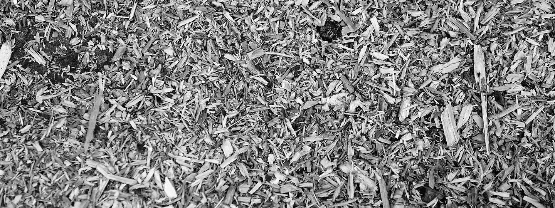 2018_03_27_biomass_fuels