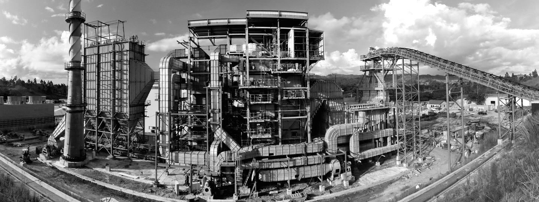 E5982_Biomass